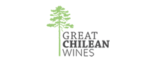 Great Chilean Wines