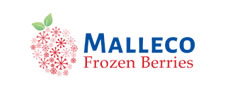 Malleco Frozen Berries