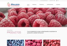 Malleco Frizen Berries